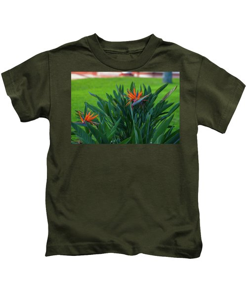 Birds Of Paradise, Vistoria Falls Hotel Kids T-Shirt