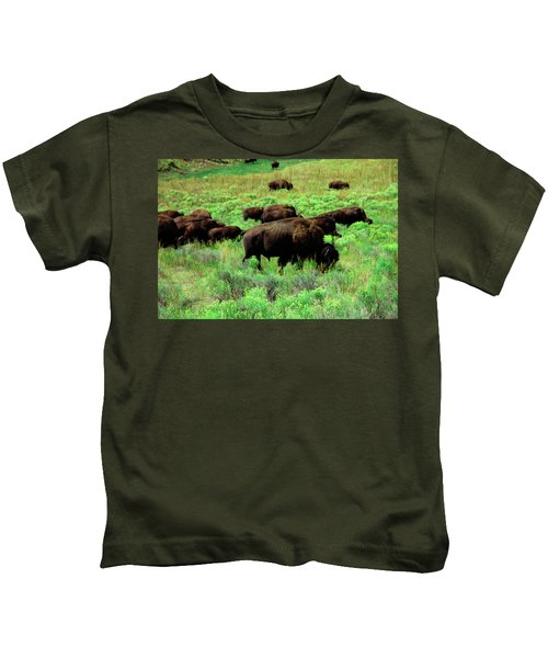 Bison2 Kids T-Shirt