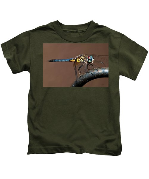 Blue And Gold Dragonfly Kids T-Shirt
