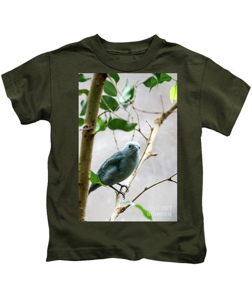Blue-grey Tanager 2 Kids T-Shirt