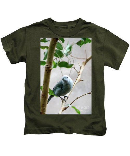 Blue-grey Tanager Kids T-Shirt