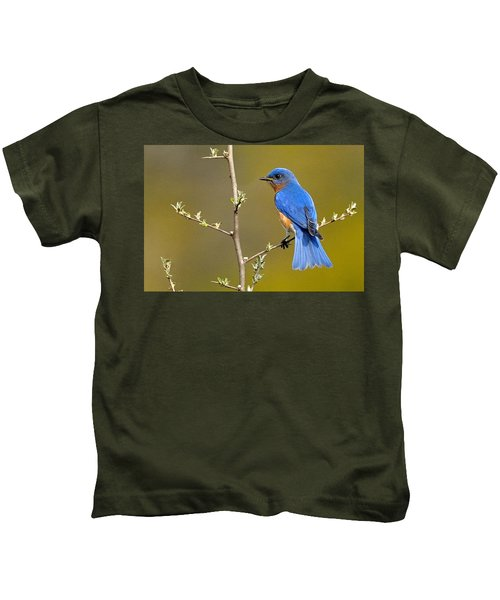 Kids T-Shirt featuring the photograph Bluebird Bliss by William Jobes