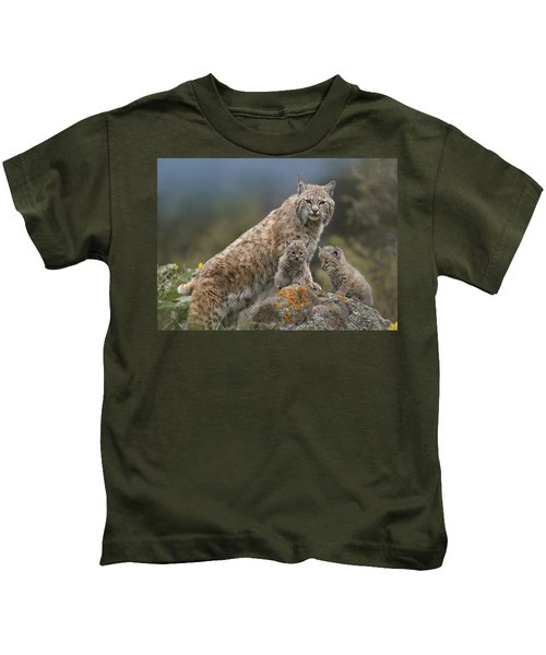 Bobcat Mother And Kittens North America Kids T-Shirt