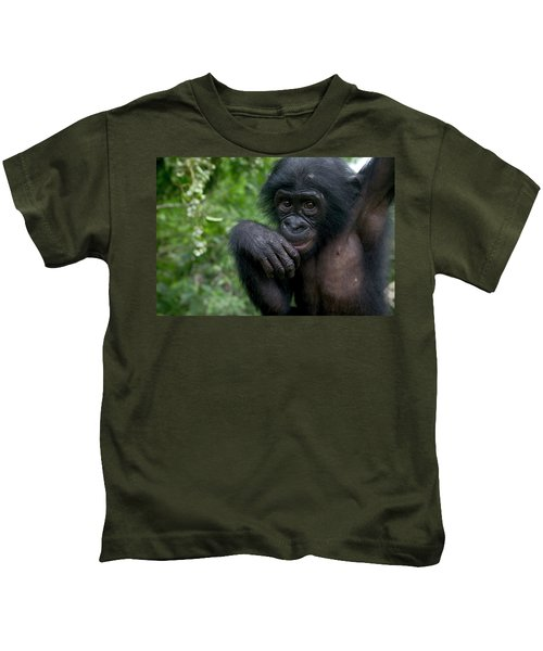 Bonobo Pan Paniscus Juvenile Orphan Kids T-Shirt