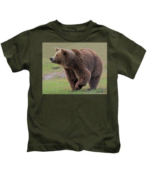 Brown Bear 14.5 Kids T-Shirt