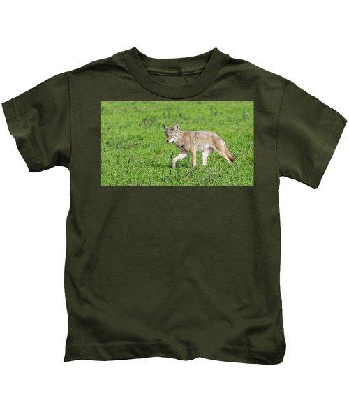 California Walk  Kids T-Shirt