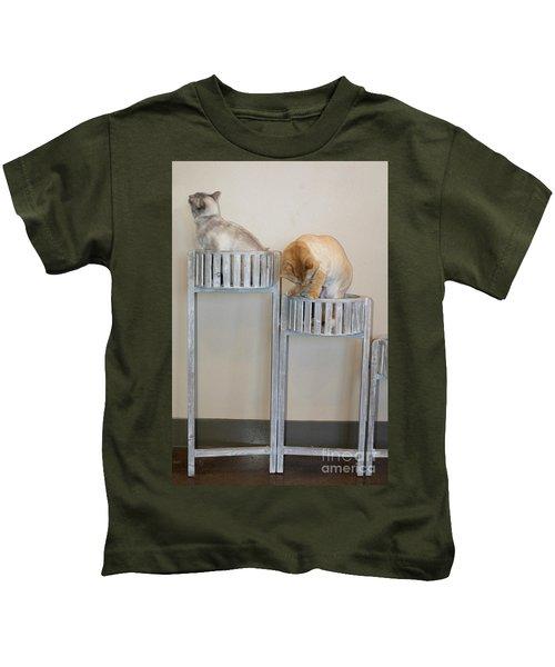 Cats In Baskets Kids T-Shirt