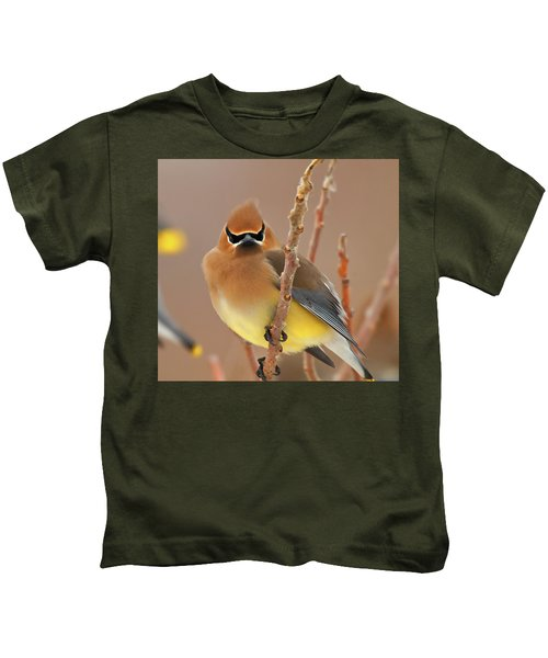 Cedar Wax Wing Kids T-Shirt by Carl Shaw