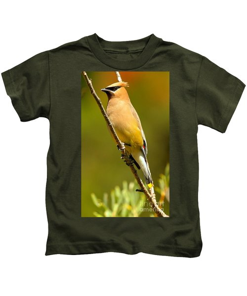 Cedar Waxwing Kids T-Shirt by Adam Jewell