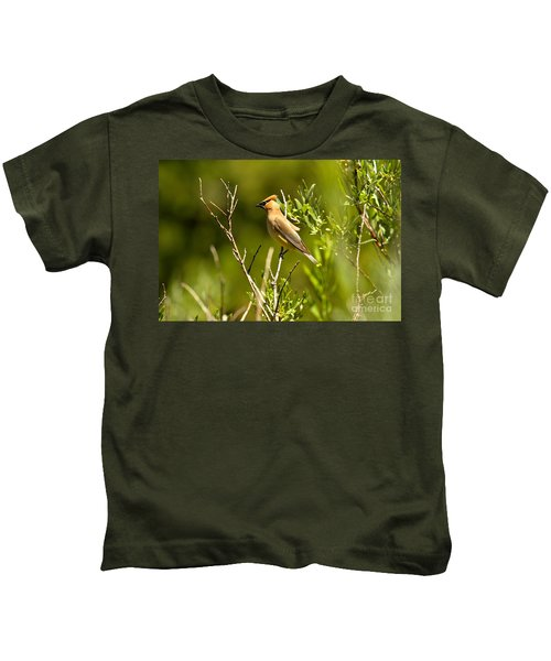 Cedar Waxwing At Glacier Kids T-Shirt by Adam Jewell