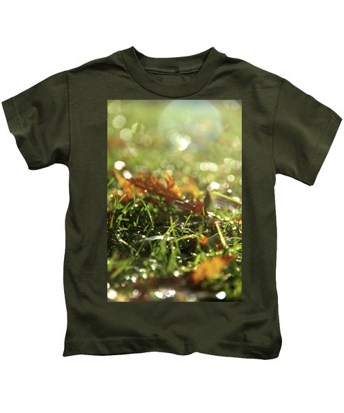 Close-up Of Dry Leaves On Grass, In A Sunny, Humid Autumn Morning Kids T-Shirt