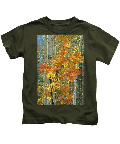 Colorful Aspen Along Million Dollar Highway Kids T-Shirt