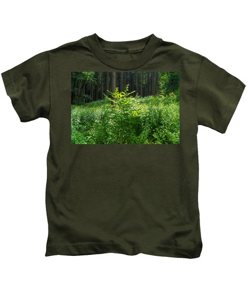 Colors Of A Forest In Vogelsberg Kids T-Shirt