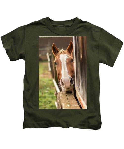 Curious Horse Kids T-Shirt