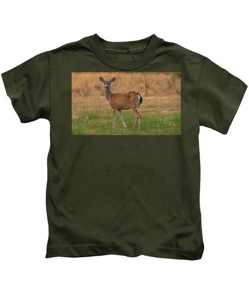 Deer At Sunset Kids T-Shirt
