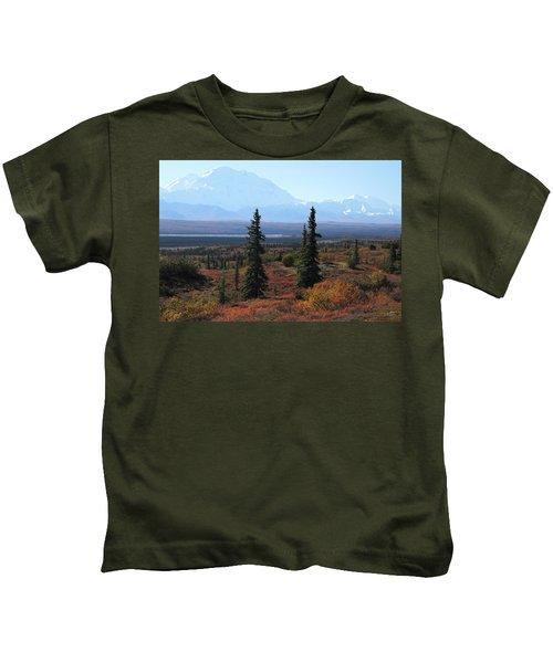 Denali From Near Wonder Lake Kids T-Shirt