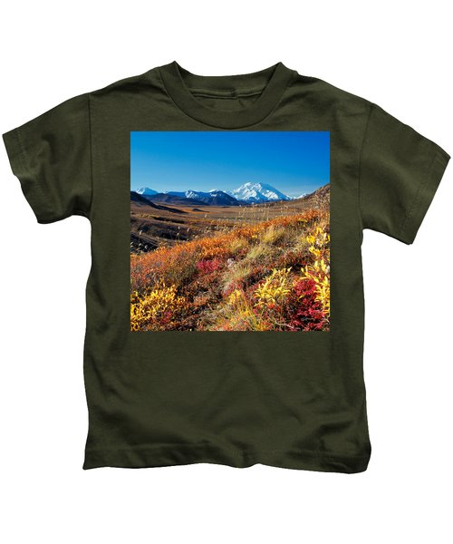 Denalis Perspective Kids T-Shirt