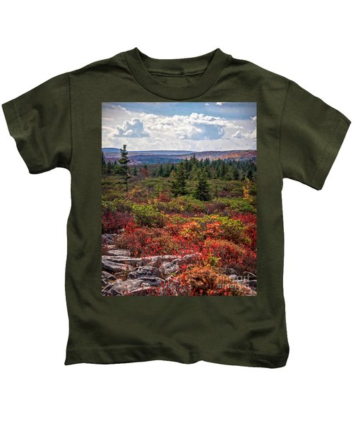 Dolly Sods Wilderness In Autumn 4273 Kids T-Shirt