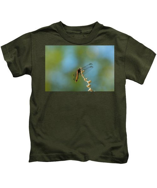 Dragonfly Wings Kids T-Shirt