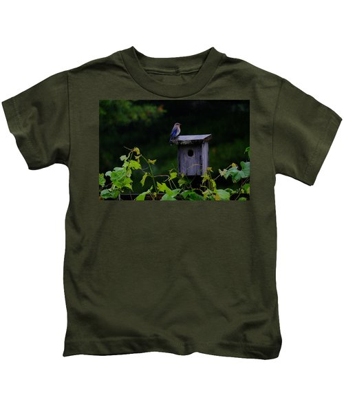 Eastern Bluebird In The Rain Kids T-Shirt