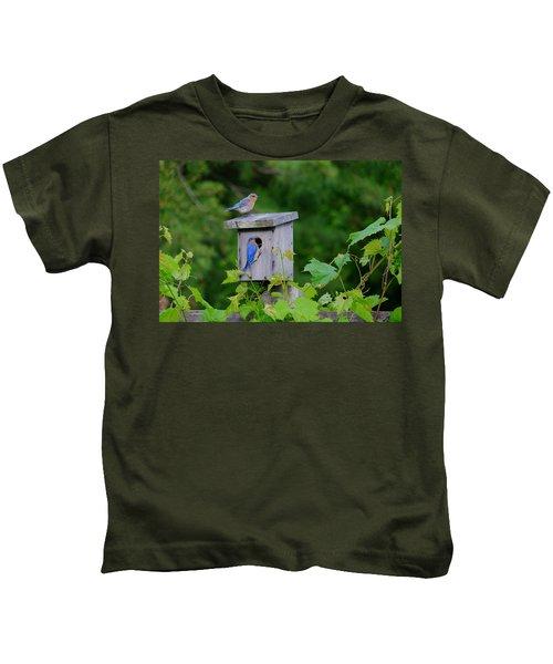 Eastern Bluebird Pair Kids T-Shirt
