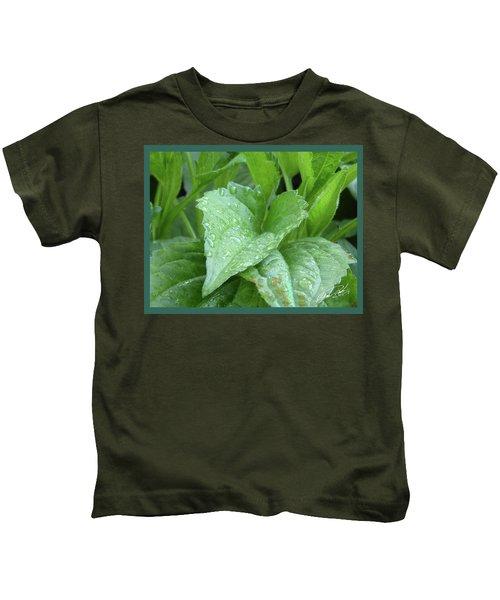 Echinacea After The Rain I Kids T-Shirt