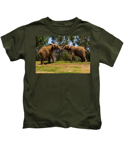 Elephant Play 3 Kids T-Shirt