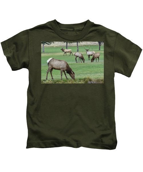 Elk On Golf Course Estes Park Colorado Kids T-Shirt