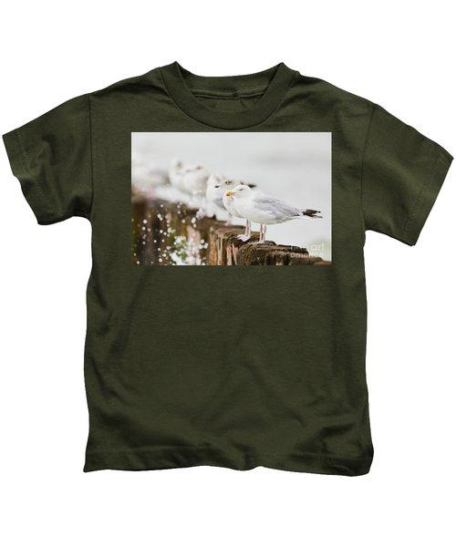 European Herring Gulls In A Row  Kids T-Shirt