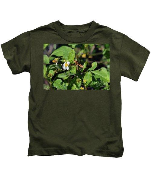 European Hornet Kids T-Shirt