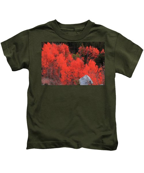Faafallscene101 Kids T-Shirt