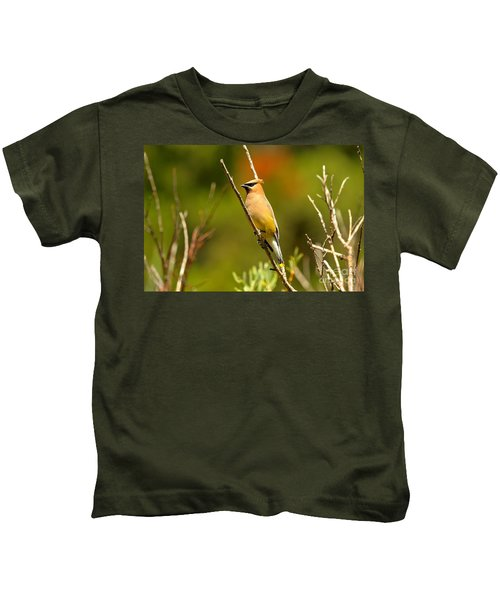 Fishercap Cedar Waxwing Kids T-Shirt by Adam Jewell