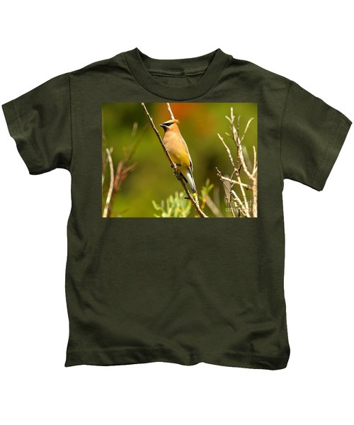 Glacier Cedar Waxwing Kids T-Shirt by Adam Jewell