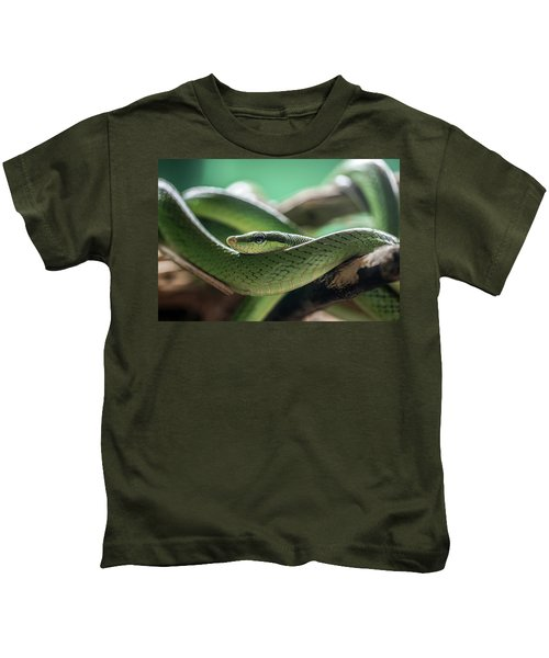 Green Snake On The Branch Kids T-Shirt