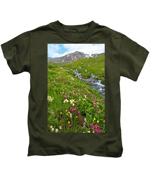Handie's Peak And Alpine Meadow Kids T-Shirt