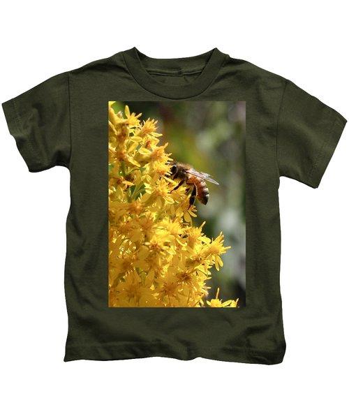 Honeybee On Showy Goldenrod Kids T-Shirt