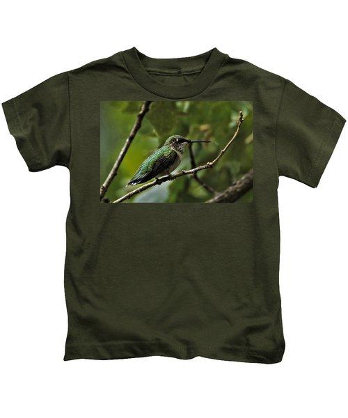 Hummingbird On Branch Kids T-Shirt