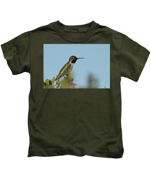 Hummingbird On Watch Kids T-Shirt