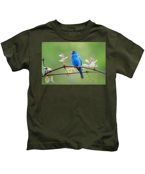 Indigo Bunting Perched Kids T-Shirt by Bill Wakeley
