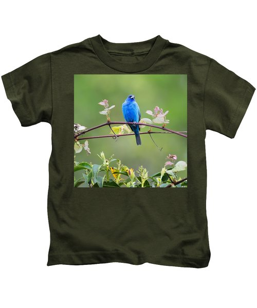 Indigo Bunting Perched Square Kids T-Shirt by Bill Wakeley