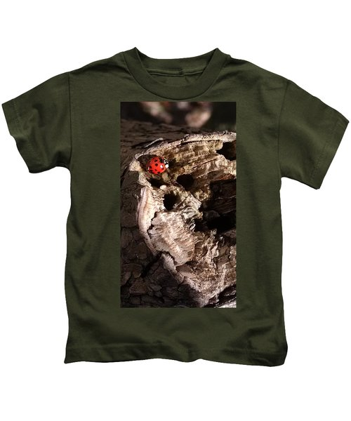 Just A Place To Rest Kids T-Shirt