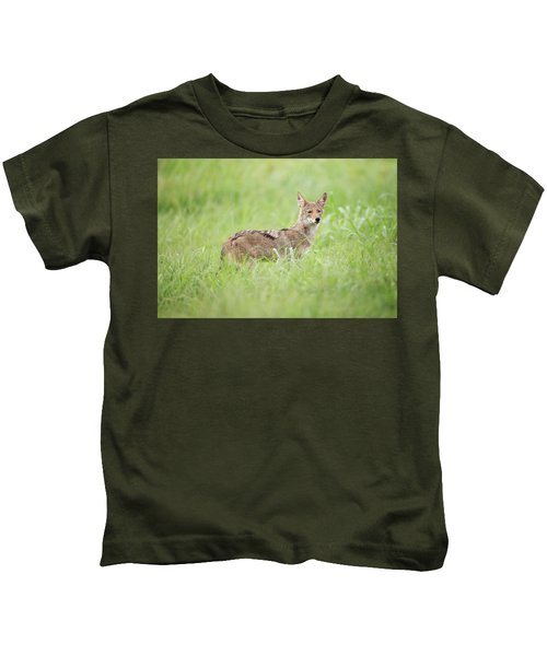 Juvenile Coyote Kids T-Shirt