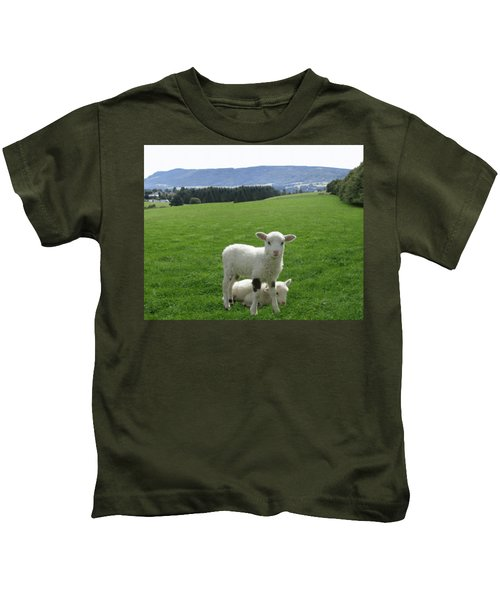Lambs In Pasture Kids T-Shirt by Dominic Yannarella