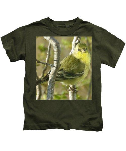 Lesser Goldfinch 1 Kids T-Shirt