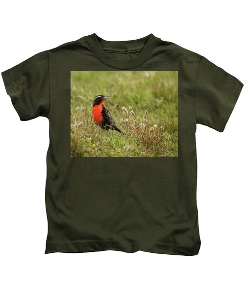 Long-tailed Meadowlark Kids T-Shirt by Bruce J Robinson