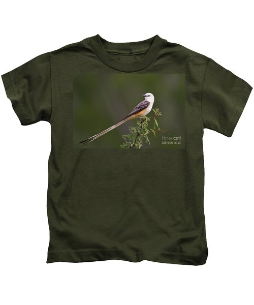 Male Scissor-tail Flycatcher Tyrannus Forficatus Wild Texas Kids T-Shirt