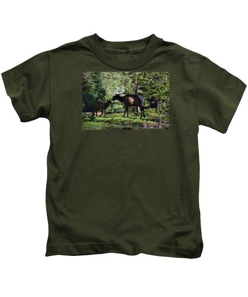 Elk Calf - Mother Rmnp Co Kids T-Shirt