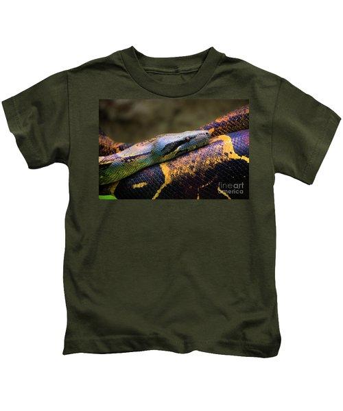 Don't Wear This Boa Kids T-Shirt by Al Bourassa