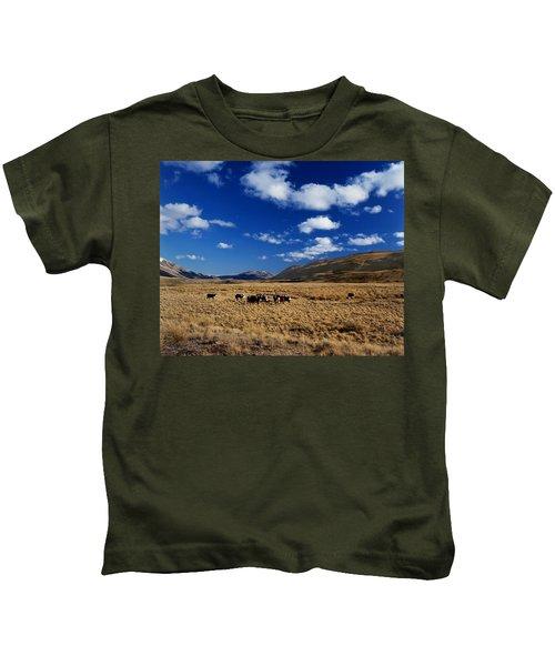 Mount Nicholas Station New Zealand Kids T-Shirt