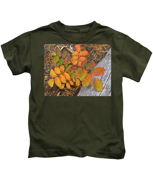 New And Old Life Cycles Kids T-Shirt
